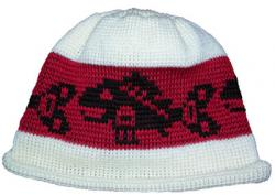 Pacific Northwest Art Style Baby Salmon Design on Knit Native Cap