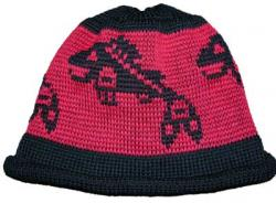 Jumping Salmon Pacific Northwest Art Style in this knit Native Cap
