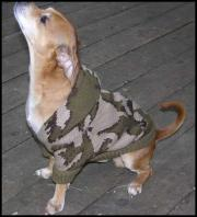 Knit Winona Camo Dog Sweater Dippie enjoys the warmth, comfort, and style