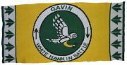 Gavin's White Hawk in Battle ~ Reproduction Woodland Indian Design ~ Acrylic