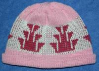 Little Foot Native Basketry Mark on this Baby Indian Beanie Acrylic